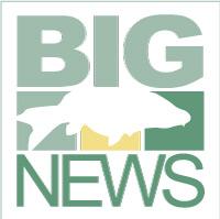 Big Carp News